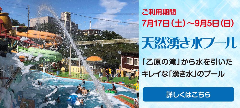 天然湧水プール